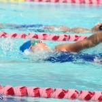 Swimming Bermuda June 13 2018 (1)