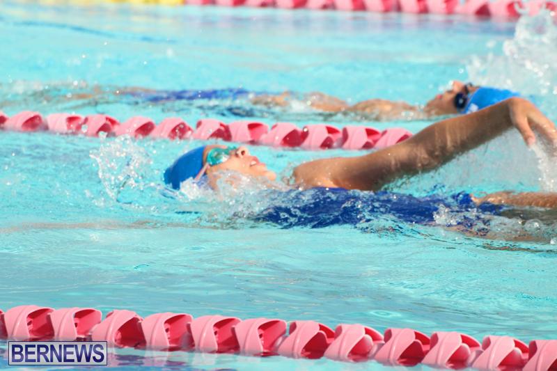 Swimming-Bermuda-June-13-2018-1