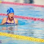 Swimming Bermuda June 13 2018 (10)