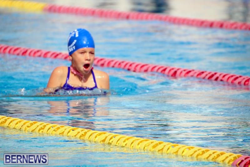 Swimming-Bermuda-June-13-2018-10