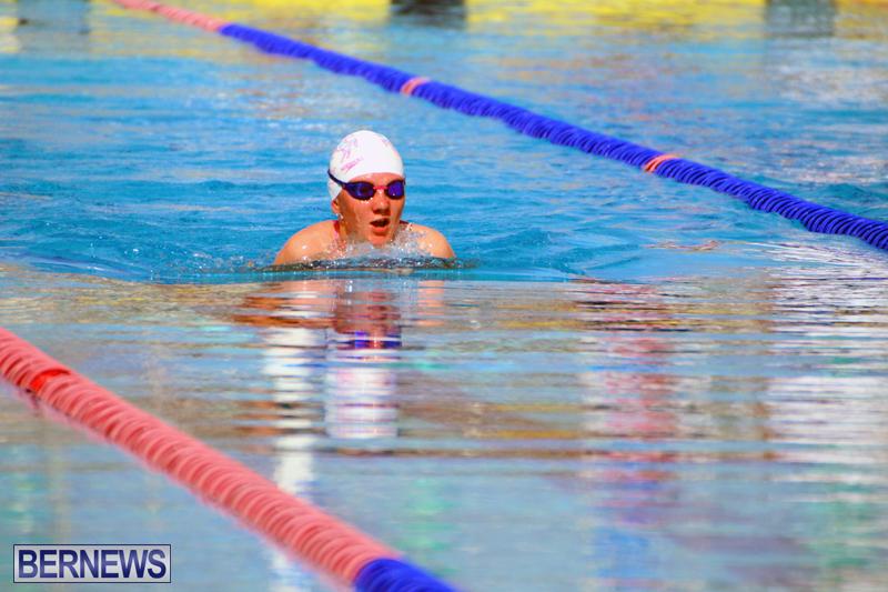 Swimming-Bermuda-June-13-2018-11
