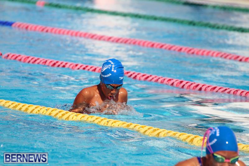 Swimming-Bermuda-June-13-2018-12