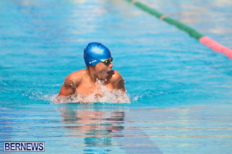 Swimming-Bermuda-June-13-2018-13