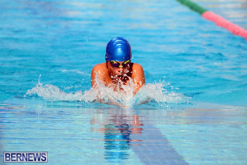 Swimming-Bermuda-June-13-2018-14