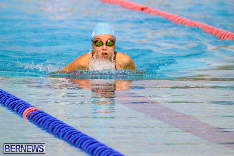 Swimming-Bermuda-June-13-2018-15
