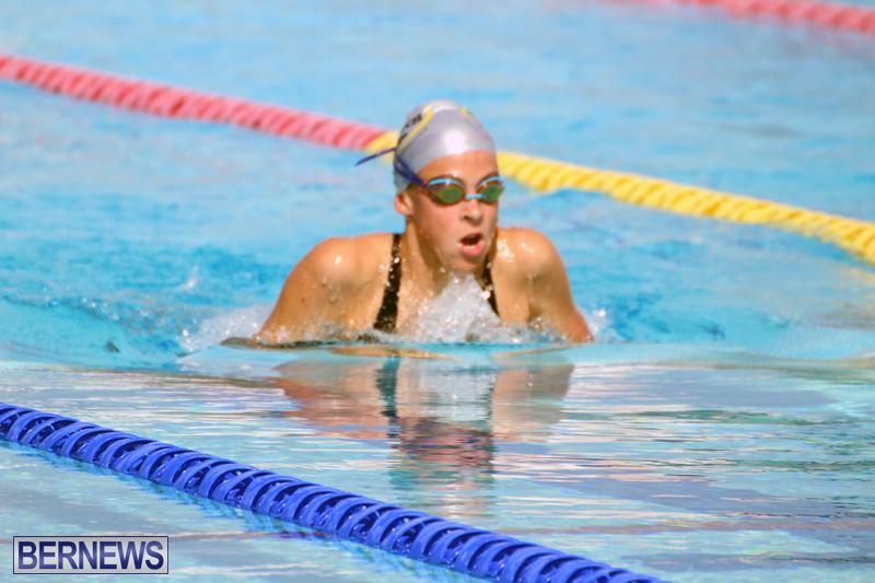 Swimming-Bermuda-June-13-2018-16