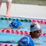 Swimming Bermuda June 13 2018 (19)