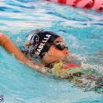 Swimming Bermuda June 13 2018 (4)