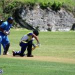 cricket Bermuda June 20 2018 (6)