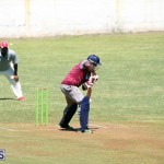 cricket Bermuda June 27 2018 (1)