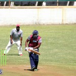 cricket Bermuda June 27 2018 (6)