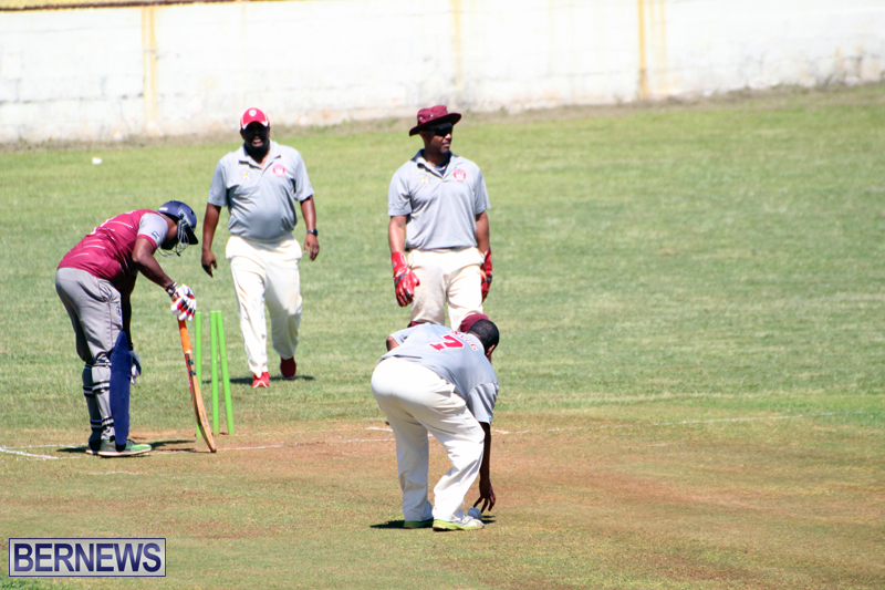 cricket-Bermuda-June-27-2018-8