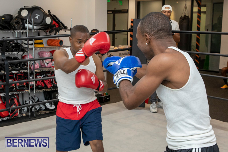 Aries-Sports-Center-celebrity-boxing-for-charity-Bermuda-July-28-2018-9344