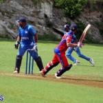 Cricket Bermuda July 4 2018 (18)