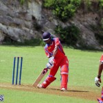 Cricket Bermuda July 4 2018 (3)