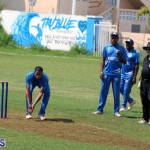 Cricket Bermuda July 4 2018 (4)