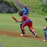 Cricket Bermuda July 4 2018 (6)