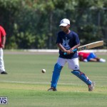 Department of Youth and Sport Annual Mini Cup Match Bermuda, July 26 2018-8439