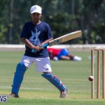 Department of Youth and Sport Annual Mini Cup Match Bermuda, July 26 2018-8441