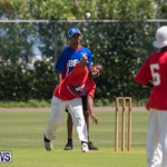 Department of Youth and Sport Annual Mini Cup Match Bermuda, July 26 2018-8453