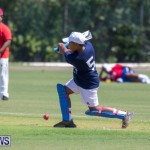 Department of Youth and Sport Annual Mini Cup Match Bermuda, July 26 2018-8462