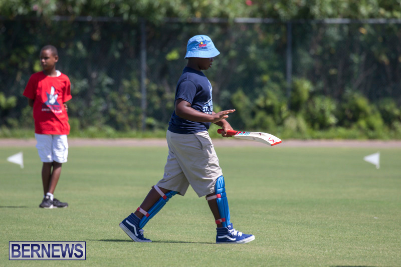 Department-of-Youth-and-Sport-Annual-Mini-Cup-Match-Bermuda-July-26-2018-8489