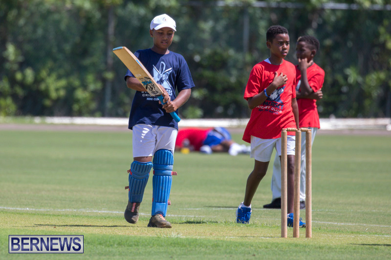 Department-of-Youth-and-Sport-Annual-Mini-Cup-Match-Bermuda-July-26-2018-8550