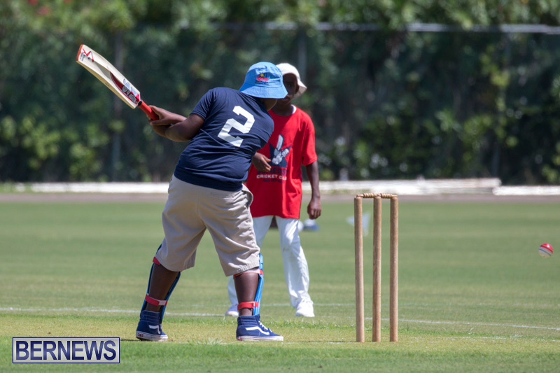 Department-of-Youth-and-Sport-Annual-Mini-Cup-Match-Bermuda-July-26-2018-8641