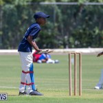 Department of Youth and Sport Annual Mini Cup Match Bermuda, July 26 2018-8653