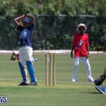 Department of Youth and Sport Annual Mini Cup Match Bermuda, July 26 2018-8664