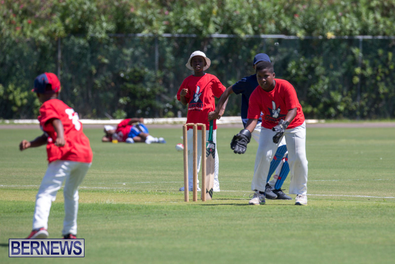 Department-of-Youth-and-Sport-Annual-Mini-Cup-Match-Bermuda-July-26-2018-8693