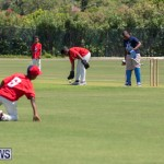 Department of Youth and Sport Annual Mini Cup Match Bermuda, July 26 2018-8711