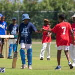 Department of Youth and Sport Annual Mini Cup Match Bermuda, July 26 2018-8792