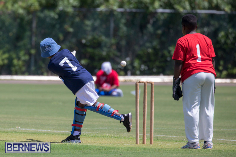 Department-of-Youth-and-Sport-Annual-Mini-Cup-Match-Bermuda-July-26-2018-8801