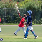 Department of Youth and Sport Annual Mini Cup Match Bermuda, July 26 2018-8806