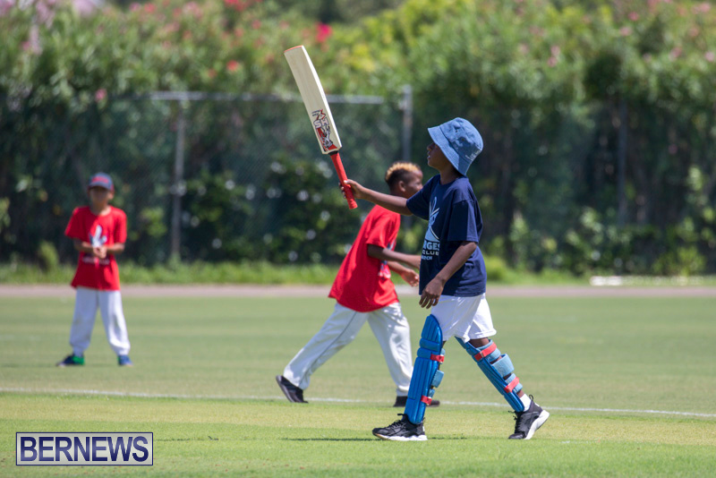 Department-of-Youth-and-Sport-Annual-Mini-Cup-Match-Bermuda-July-26-2018-8806