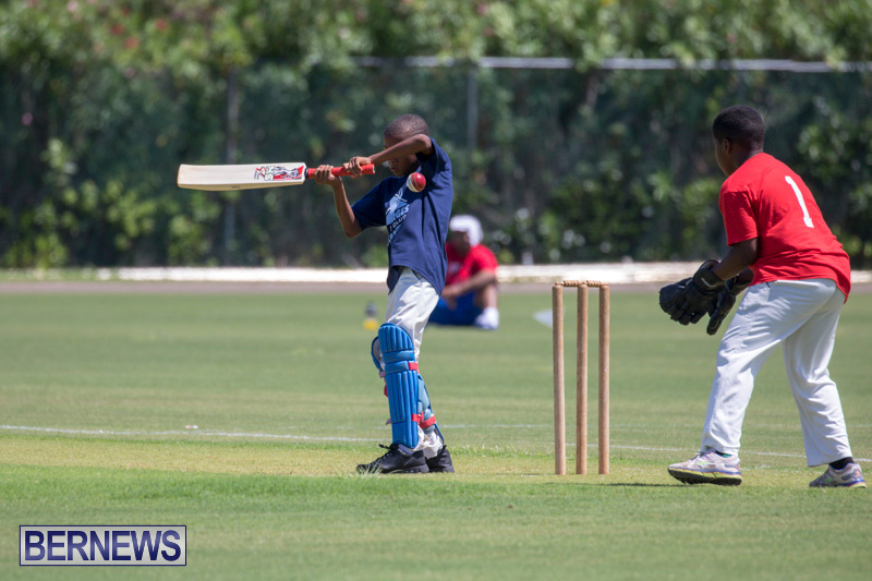 Department-of-Youth-and-Sport-Annual-Mini-Cup-Match-Bermuda-July-26-2018-8852