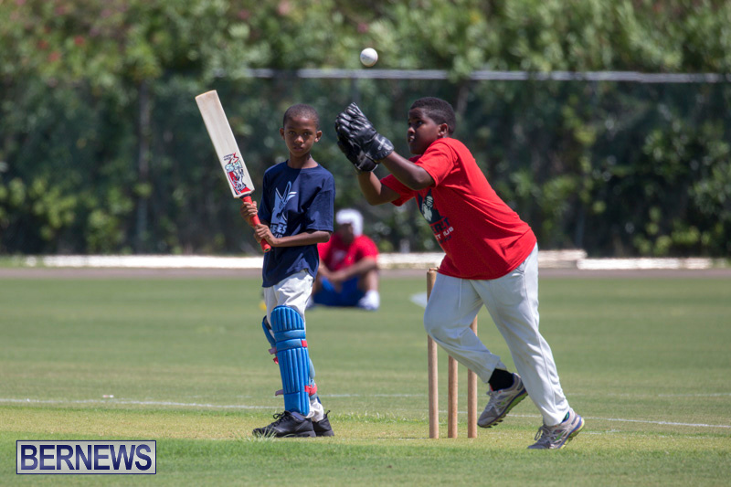 Department-of-Youth-and-Sport-Annual-Mini-Cup-Match-Bermuda-July-26-2018-8856