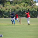 Department of Youth and Sport Annual Mini Cup Match Bermuda, July 26 2018-8906