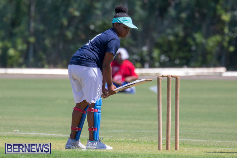 Department-of-Youth-and-Sport-Annual-Mini-Cup-Match-Bermuda-July-26-2018-8930