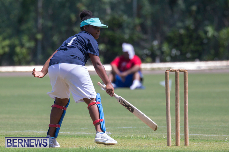 Department-of-Youth-and-Sport-Annual-Mini-Cup-Match-Bermuda-July-26-2018-9006