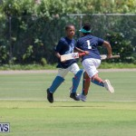 Department of Youth and Sport Annual Mini Cup Match Bermuda, July 26 2018-9059