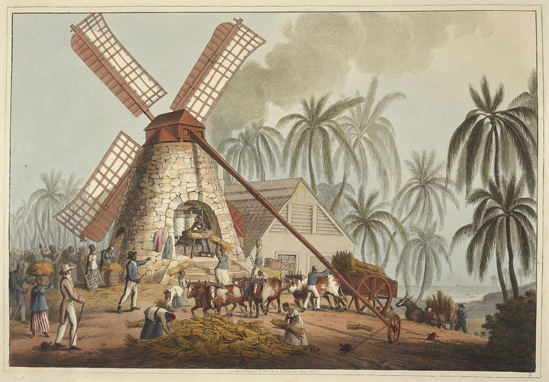 Slave Plantations