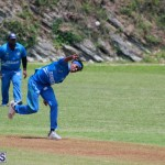 cricket Bermuda July 18 2018 (10)