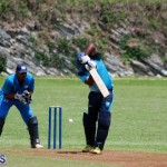 cricket Bermuda July 18 2018 (4)