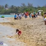 Around The Island Powerboat Race Bermuda, August 12 2018-7811