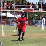 Cup Match Bermuda August 2 2018 (10)