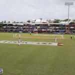 Cup Match Bermuda August 3 2018 (6)