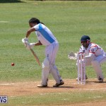 Cup Match Day 2 Bermuda, August 3 2018-2514