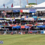 Cup Match Day 2 Bermuda, August 3 2018-2889